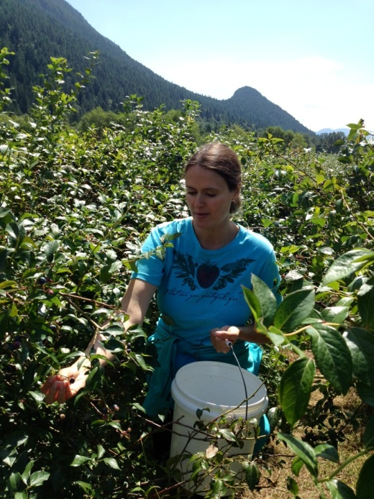Shana Picking Organic Blueberries